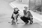 Biete Verantwortungsvolle Haustierversorgung und -betreuung