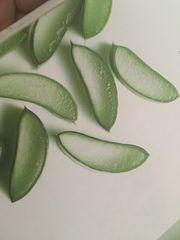 hochwertige Aloe Vera Produkte - LR