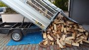 Brennholz Kaminholz inkl kostenloser Lieferung