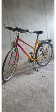 Trekking-Bike Damenfahrrad 28-Zoll