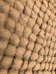 Teppich 60x 90cm nougat