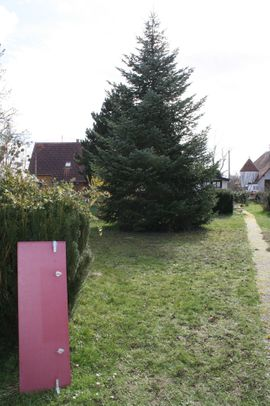 Grundstücke, Bauplätze - Baugrundstück Lauterbourg Elsass Frankreich