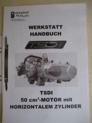 Werkstatthandbuch Handbuch Peugeot Jetforce-50 TSDI