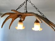 antike Elchschaufel Lampe