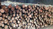 Brennholz 3 LKW Buchenautomatenholz