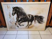 Bild mit Pferd