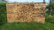 Brennholz hart