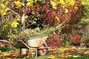 Garten Tätigkeiten