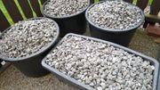 Graphitsteine aus dem Vorgarten