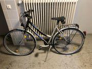 Damen Fahrrad Marke TREND 28Zoll