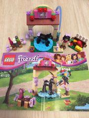 Lego Friends 41123 und 41330