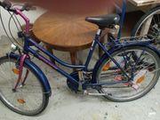 Fahrrad Kettler Alurad