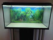 Aquarium 200 Liter und 60