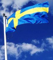 Schwedisch Sprachkurs - Schwedischkurs für Anfänger