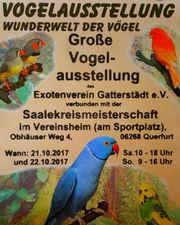 Vogelausstellung in Querfurt