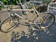 Für echte Biker alpinestars D100