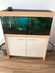 Aquarium Komplett set mit Zubehör