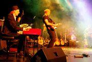 Gitarrist (Harmonica)sucht