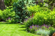 Gartengrundstück zum Kaufen langfristig Pachten