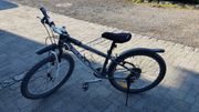 Damen Mountain Bike