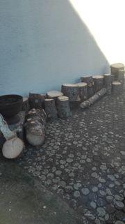 Trockenes Fichtenholz