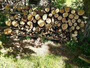 Feuerholz Kaminholz 5 RM