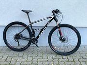 Focus Black Forest 29 Mtb