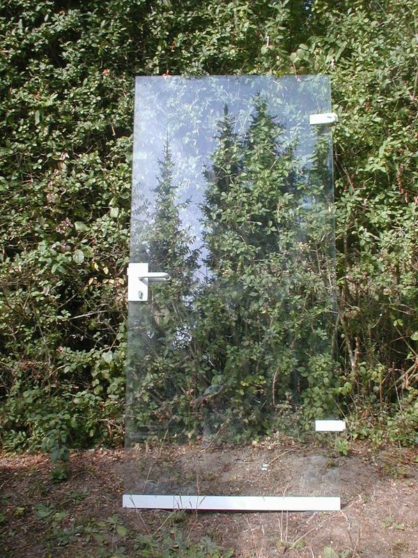 Glastüre mit Rahmen und Stahlzarge 2 Stück in Frankfurt - Türen ...