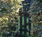 Garten Kleingarten Schrebergarten gesucht Wiernsheim