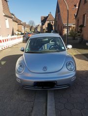 Volkswagen Beetle en Vogue 1