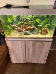 Eheim Aquarium 180 L