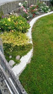 Mähe Ihren Rasen und schneide