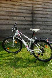 KTM Damen Mountainbike - Penny Lane