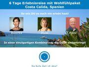 Live-Webinar: Zu