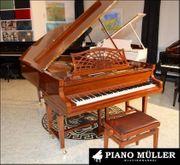 C Bechstein Konzertflügel Modell B