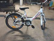kinder Fahrrad Pegasus