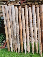Holzpfähle 12 Stück 145 cm