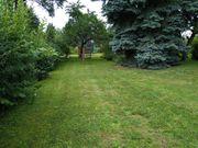 Gartengrundstück in 71299 Wimsheim