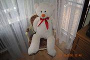 Teddybär 110cm groß