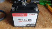 Motorradbatterie YTX14-BS 12Ah 200A 12V