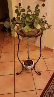 Vintage Pflanzenständer