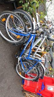 20 Stück Fahrräder Reparaturbedürftig an