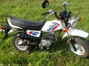 Honda CY 50 Rarität
