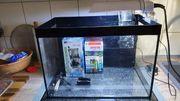 Aquarium LETZTER PREIS