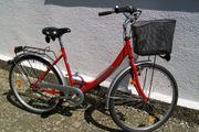 Damen-Fahrrad 26 Zoll 3-Gang-Drehgriff-Nabenschaltung Rücktrittbremse