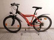 Fahrrad 26 Zoll Mädchen Damen