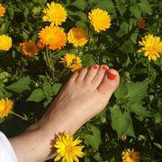 Fußpflege mit Lack