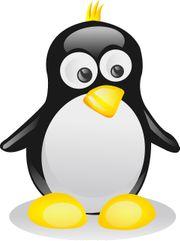 Linux - Installation für Laptop Desktop
