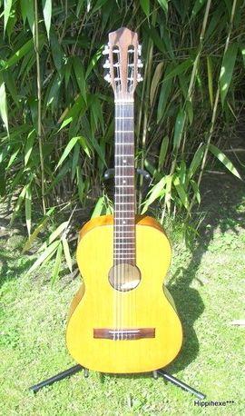Gitarren/-zubehör - Tolle 3 4 Konzertgitarre Nylonsaiten