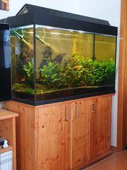 Aquarium 500 Liter